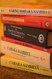 Satmya-Ayurveda-Bilder-37